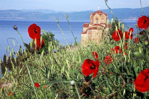 macedonische wijnen