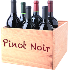 Doosje Pinot Noir