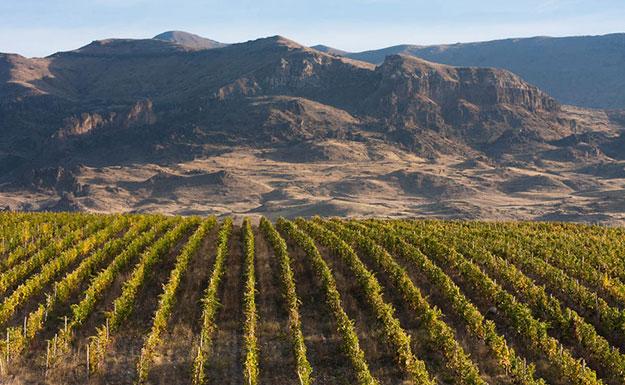 Wijn uit Armenië